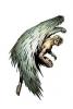 Аватар пользователя winged