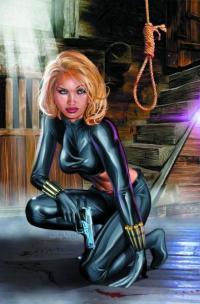 нэнси дрю проклятье черной вдовы